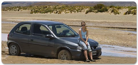 stuck in the mud - Puna Juje�a - Jujuy Province